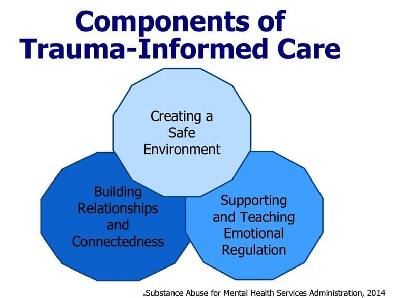 encompassing trauma-informed practices